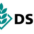 featured image DSV zaden zoekt een Machine- en Installatietechnicus